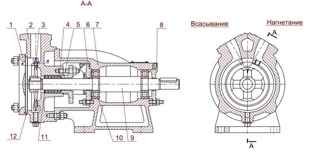 Насос 5/32К-2Г (11 кВт) в разрезе